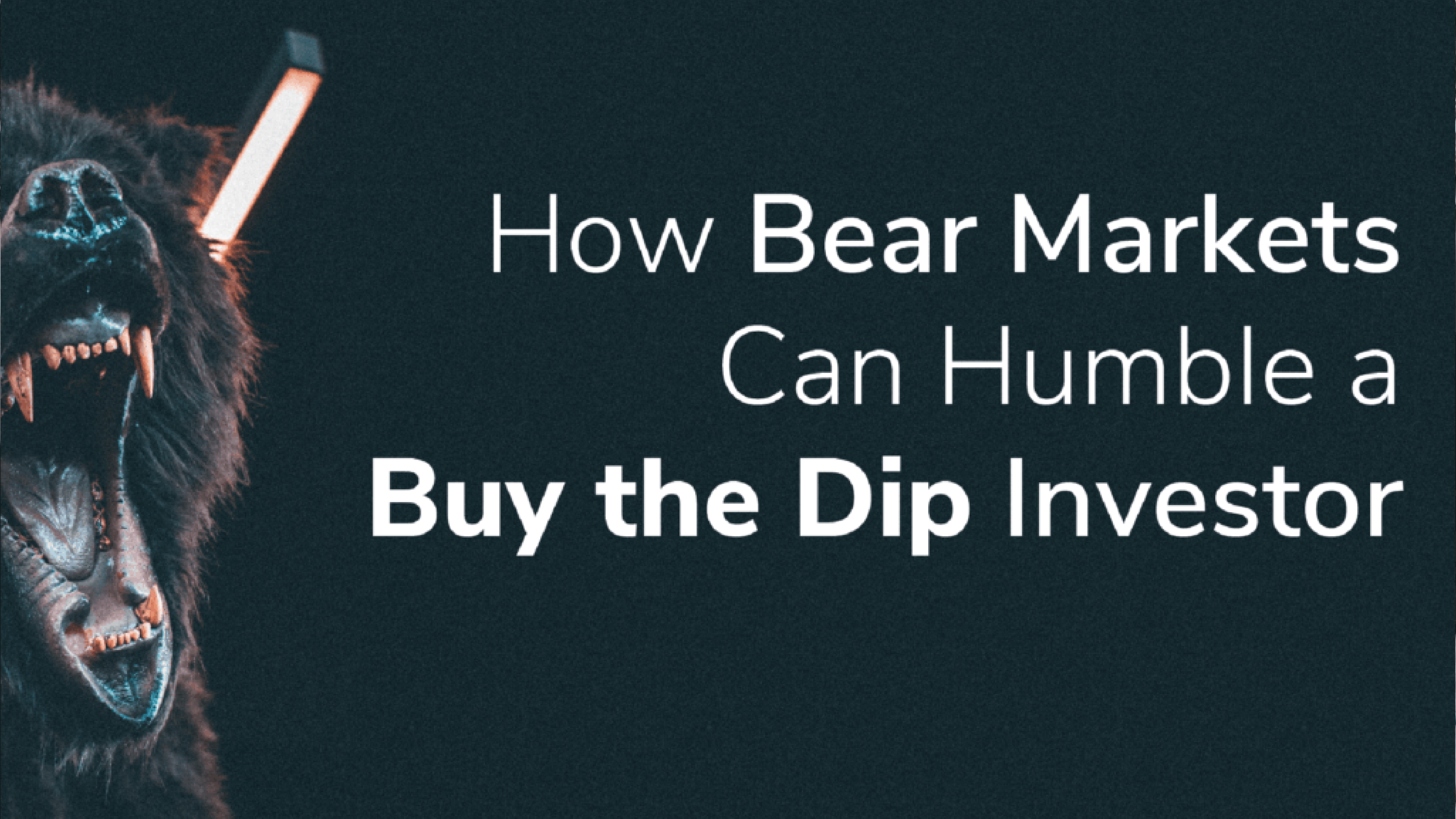 How Bear Markets Can Humble a Buy the Dip Investor