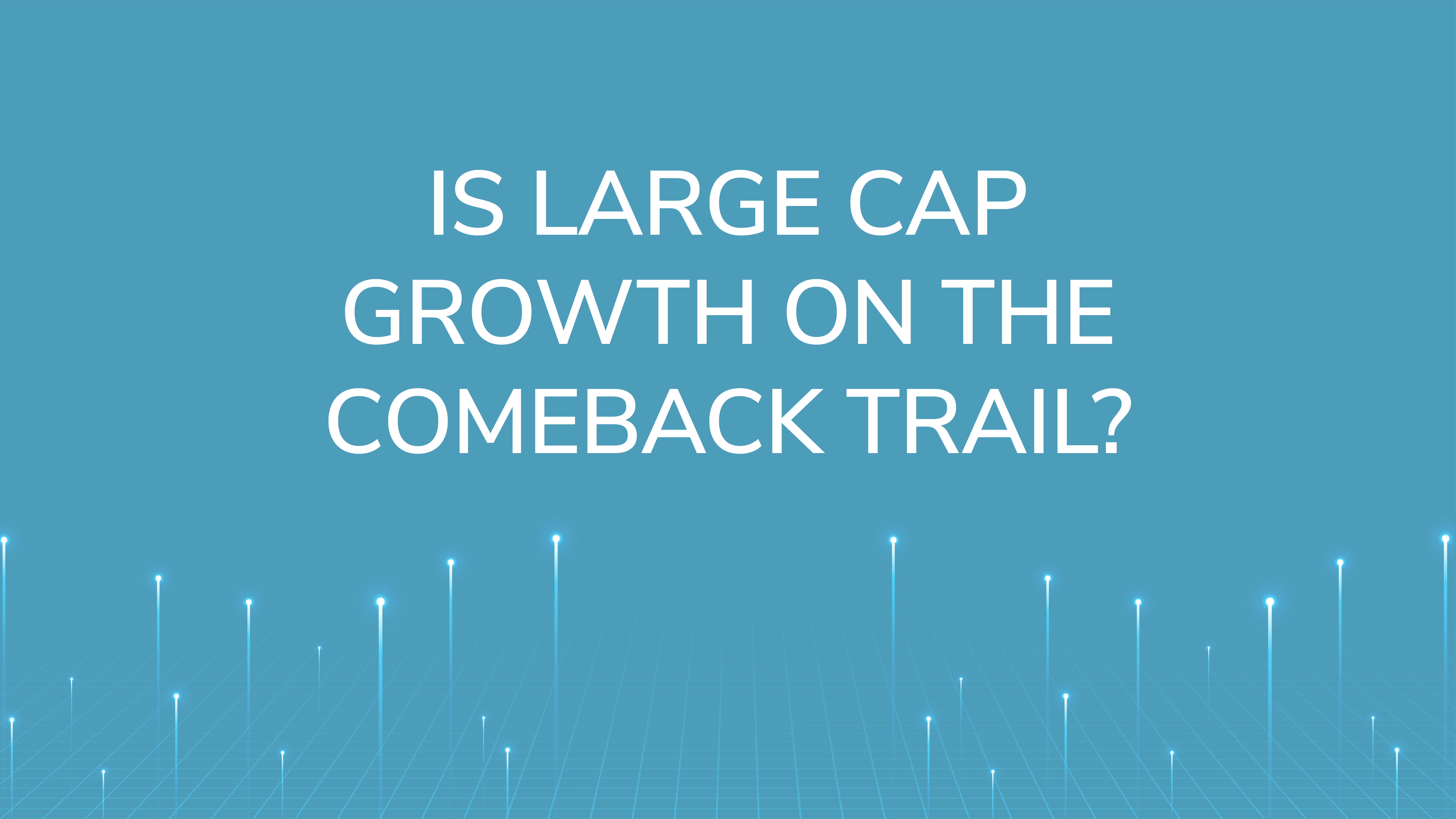 Is Large Cap Growth  On the Comeback Trail?
