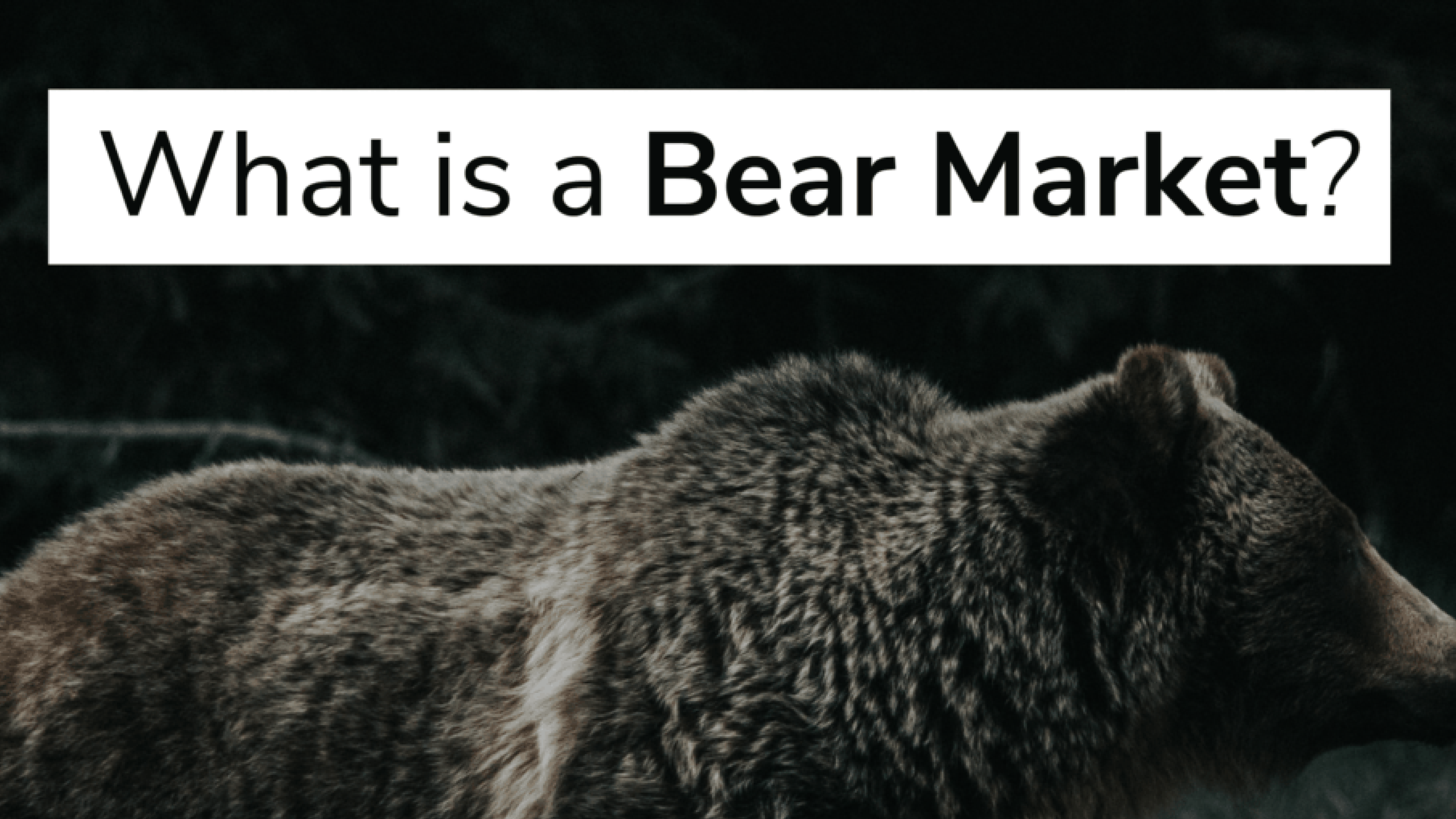 What is a Bear Market?